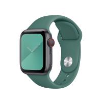 Ремешок COTEetCI W3 Sport Band для Apple Watch 42/44 mm Forest Green (WH2086-GN)